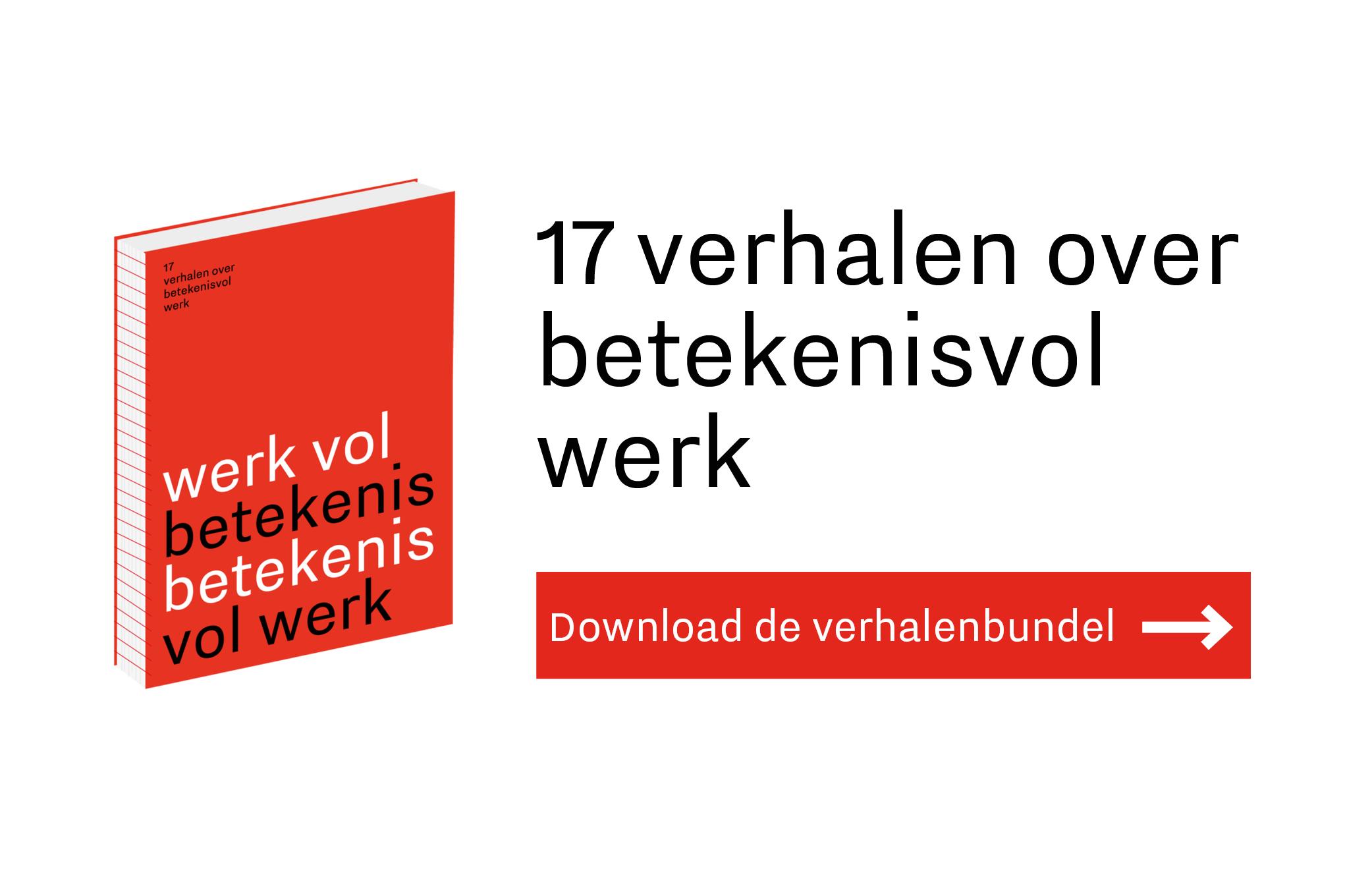 Afbeelding van het boek 17 verhalen over betekenisvol werk